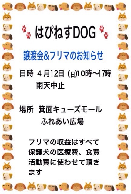 o0432064013261524854