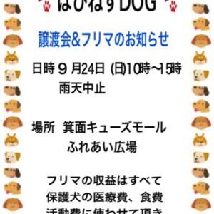img_7650-2.jpg